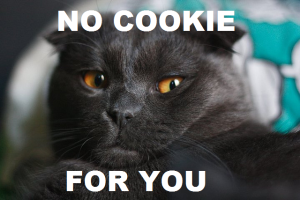 no-cookie